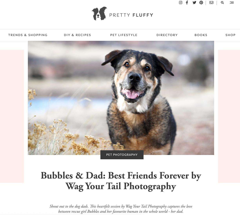 Denver Pet Photography Bubbles Pretty Fluffy