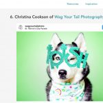 "WUT?!! ""The 8 Best Pet Photographers in Denver"""