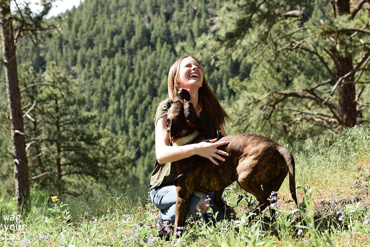 denver-dog-photographer-mojo-4