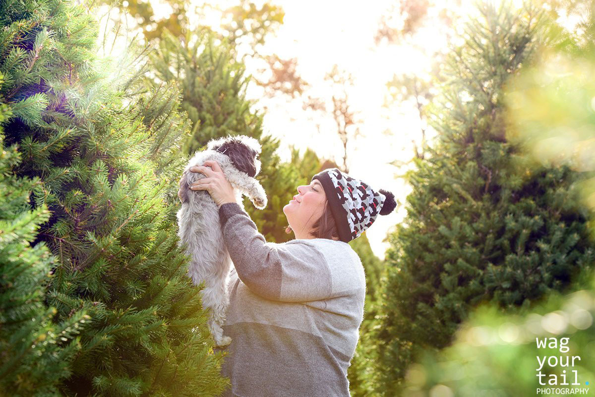 Pet photography in Tree Farm