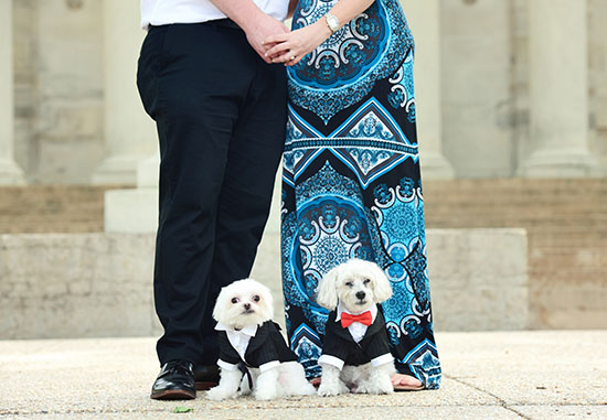 engagement-pet-photography-home-2
