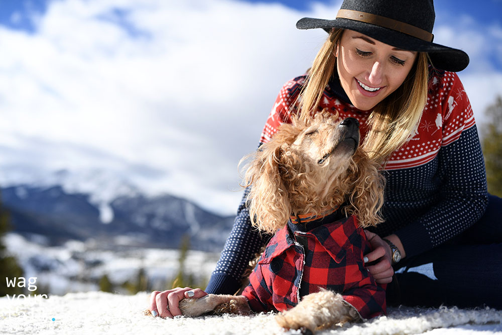 family-photo-shoot-with-pets-denver-33