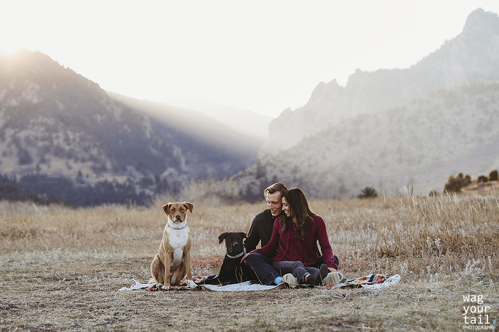 family-photo-shoot-with-pets-denver-34