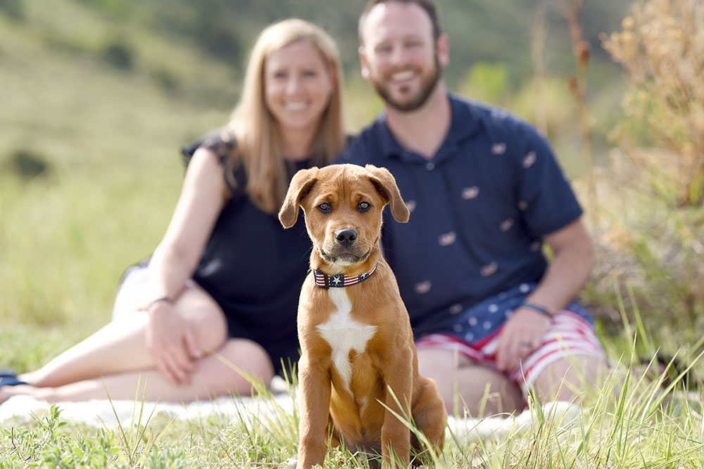 family-photo-shoot-with-pets-denver-36